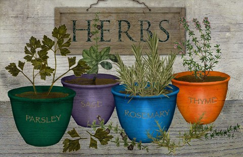 Framed Potted Herbs Print