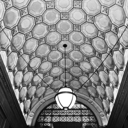 Framed Ceiling Detail Print