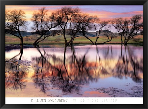 Framed Lake Reflection Print